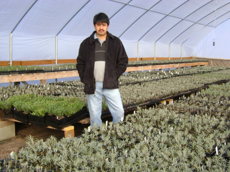 victor-in-greenhouse